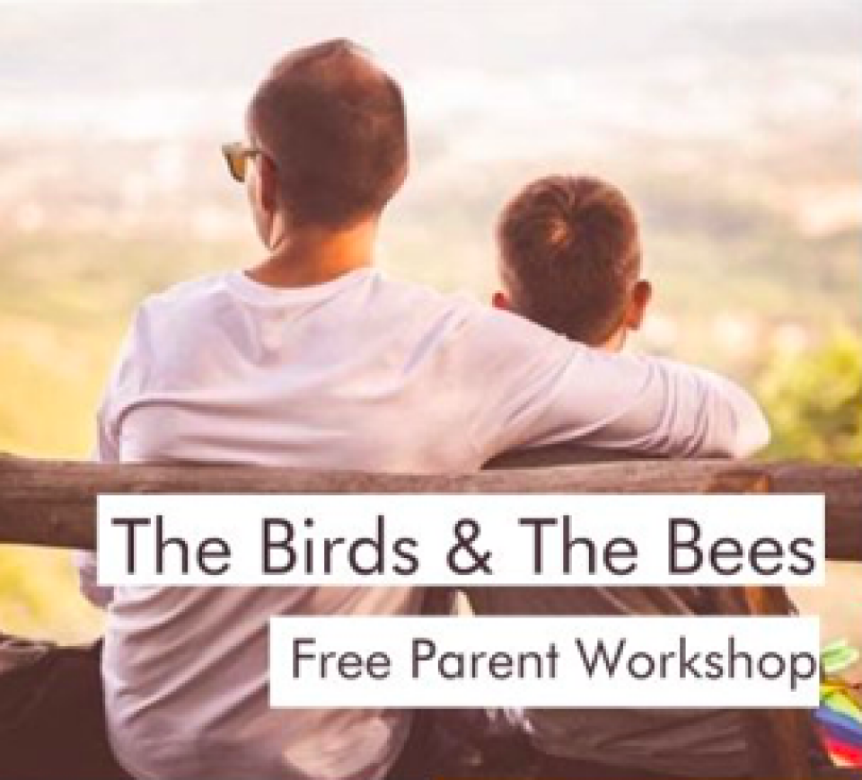 The Birds and The Bees Parent Workshop